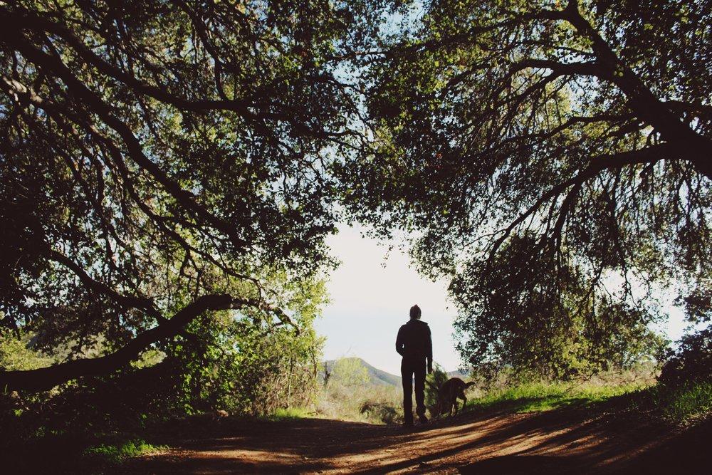 #63 Hodges Hike.JPG