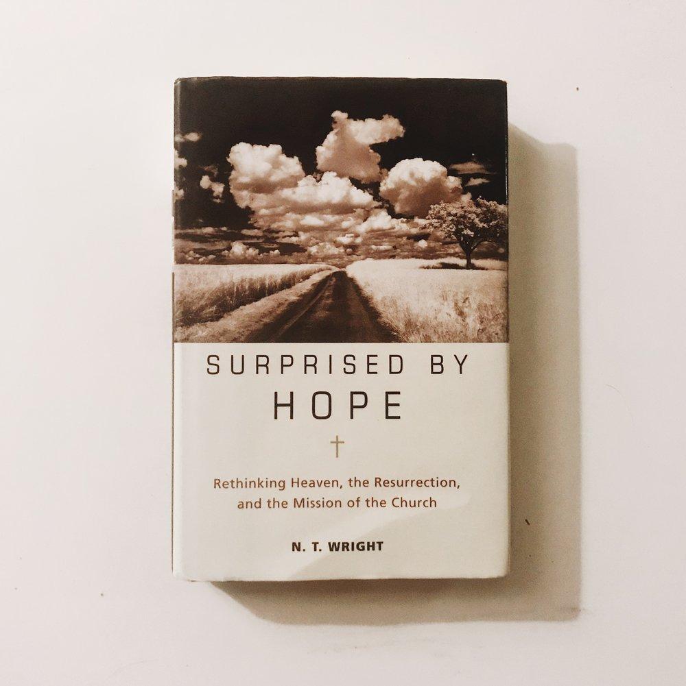 #312 Surprised By Hope.JPG