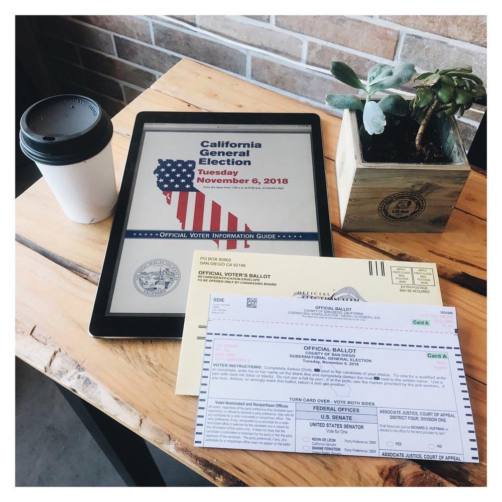 01 Voter's Homework.JPG