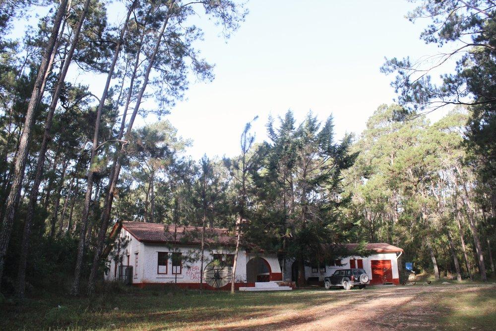 Pine Forest Lodge [1].JPG