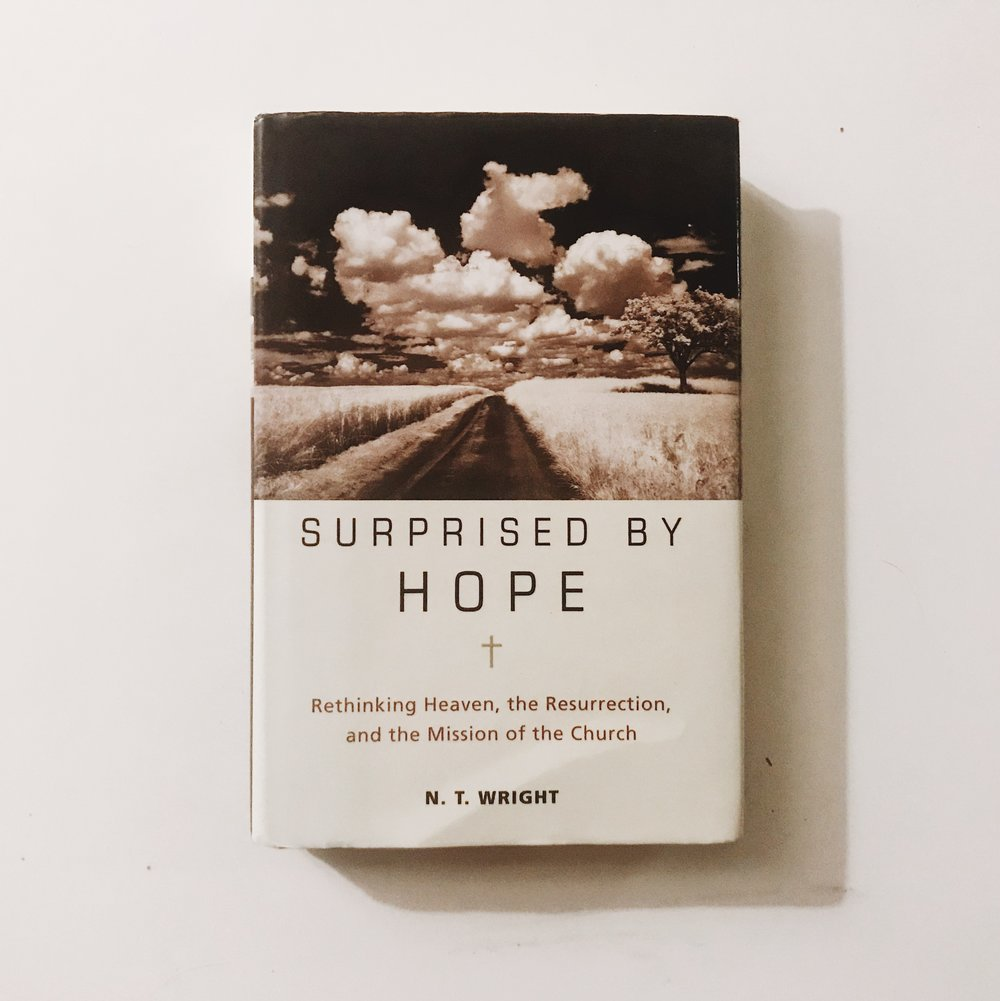 Surprised By Hope [1].JPG