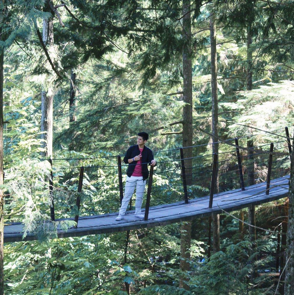 Treetops Adventure [4].jpg