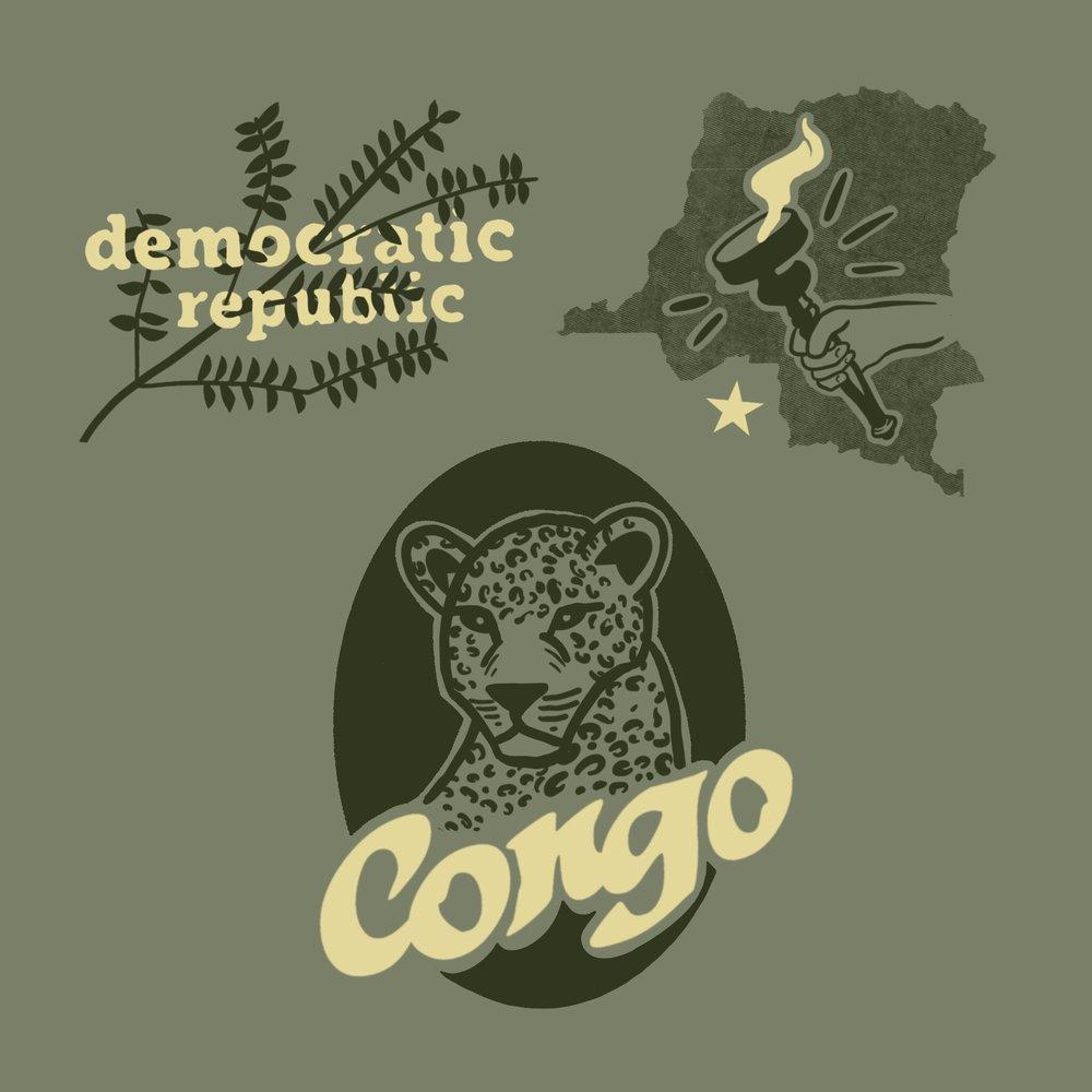 05 DR Congo Flashsheet.JPG
