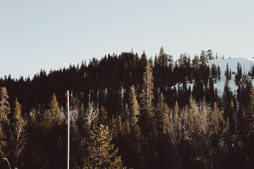Tahoe is Bliss [2].JPG