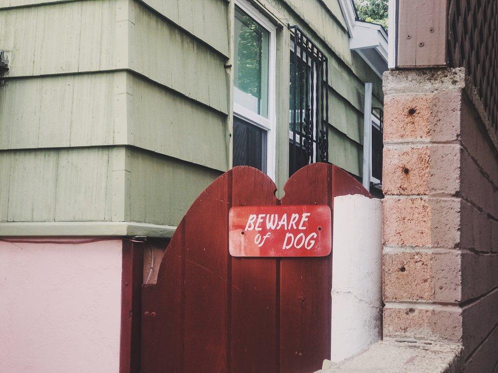 #41 Beware of Dog.JPG