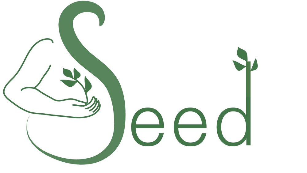 nicki_logo_seed2 (swooshy S-belly and d-leaves).jpg