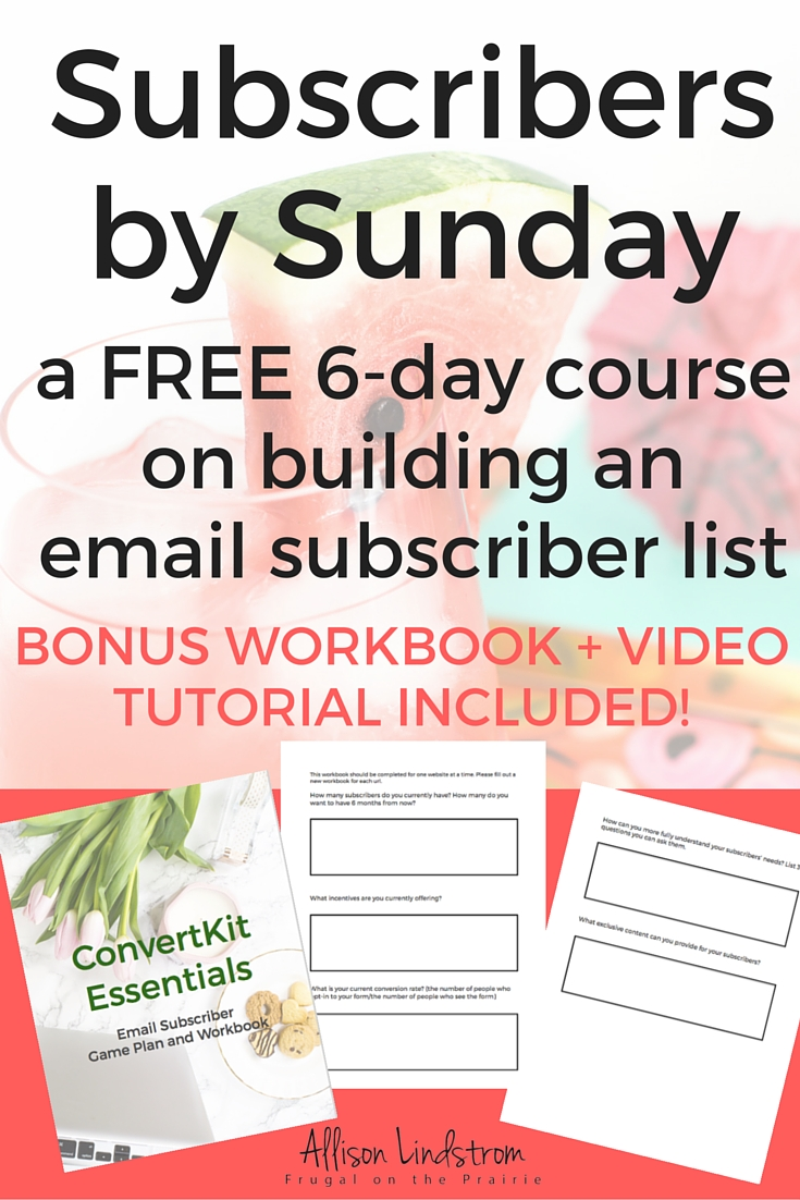 Ready to grow an email list? Join my FREE 6-day course to find out why your list isn't growing, what type of subscriber incentive converts the highest, and how to get people to stick around once they sign up!