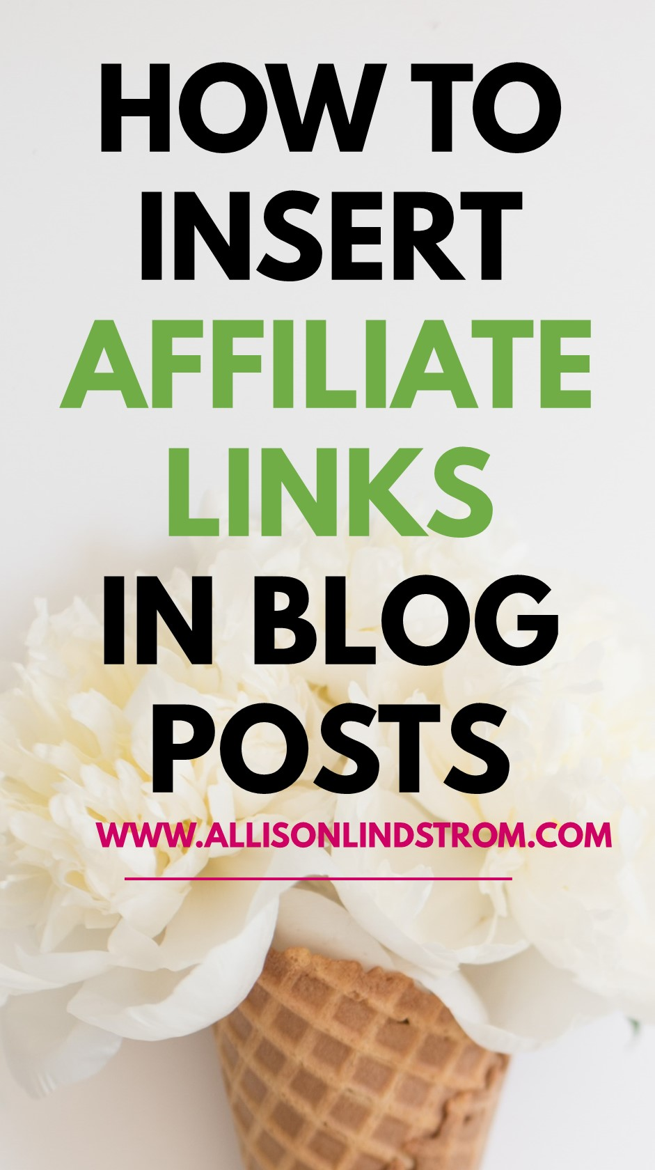 Enjoy this sneak peak in my Blogging to Win course and learn how to insert an affiliate link in your Wordpress posts! You can use this for Amazon affiliate links or almost any other affiliate program. This is the perfect tutorial if you've been wanting to add an additional way to make money on your blog. ● HOW TO INSERT AFFILIATE LINKS IN YOUR POST ● AMAZON AFFILIATE AND OTHER PROGRAMS