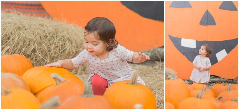 kersey+pumpkin_0002.jpg