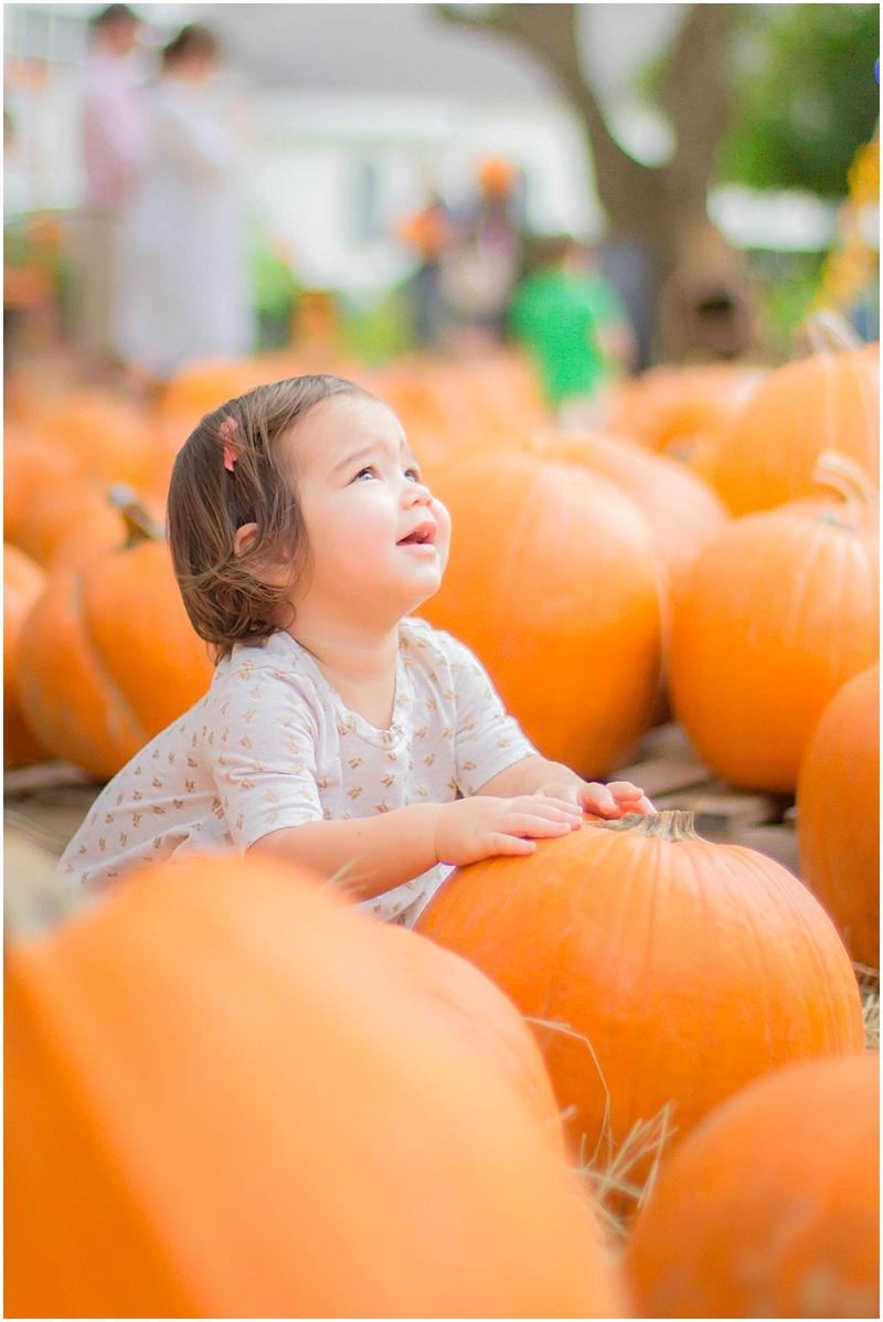 kersey+pumpkin_0003.jpg