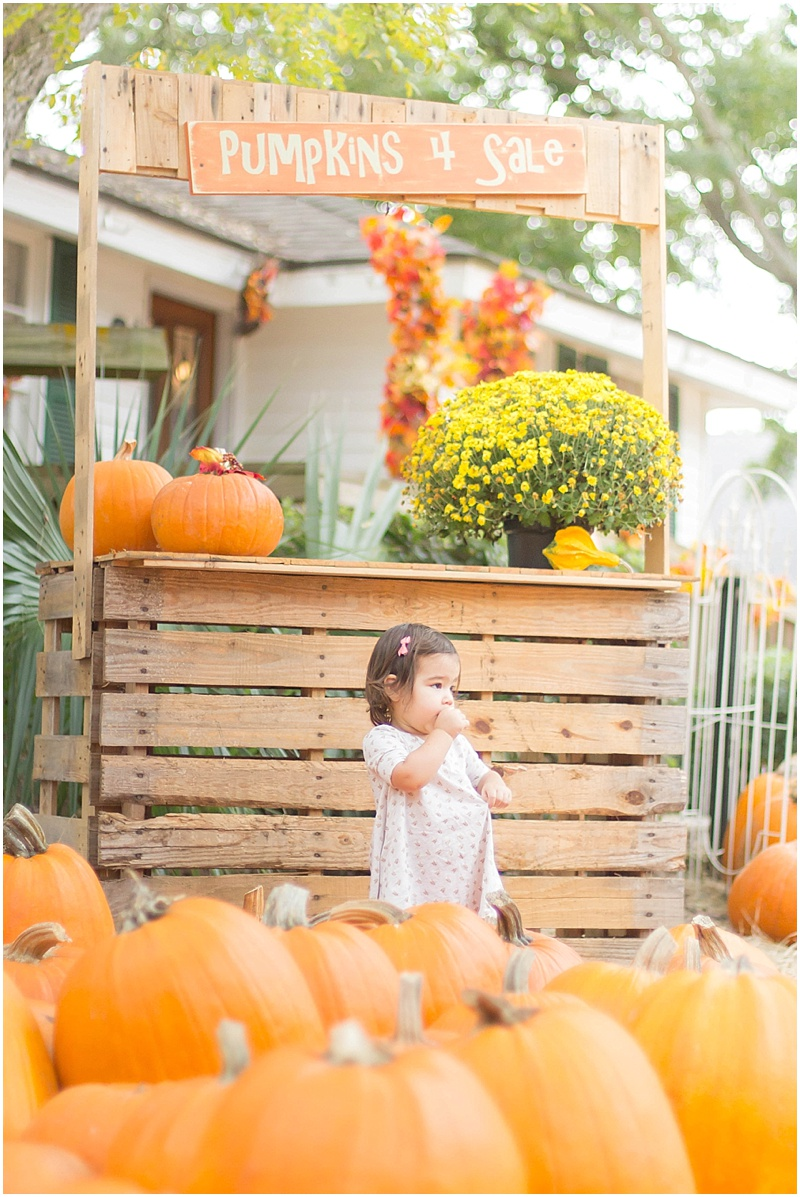 kersey+pumpkin_0004.jpg