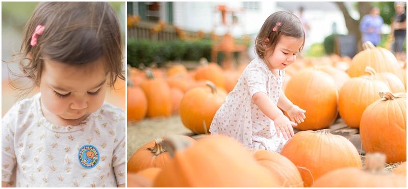 kersey+pumpkin_0005.jpg