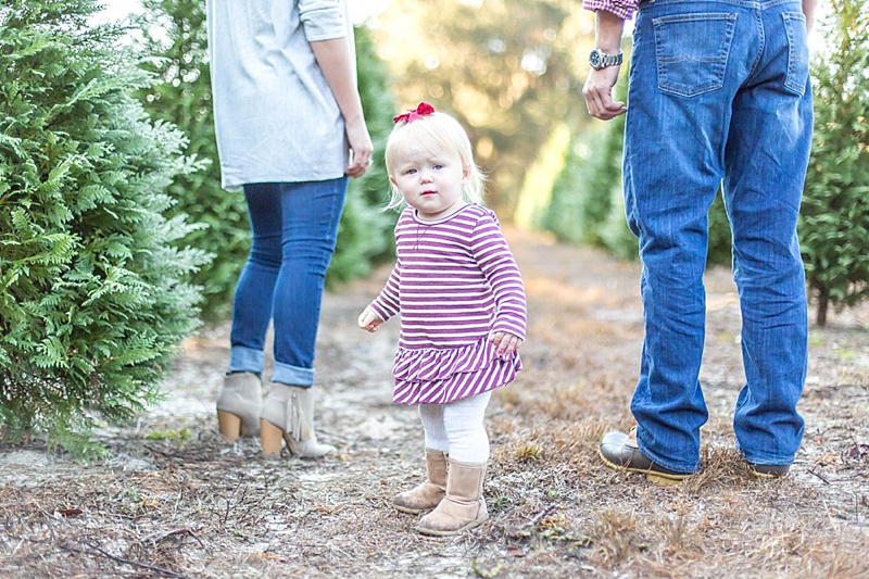 addison + christmas trees | webster tree farm_0001.jpg