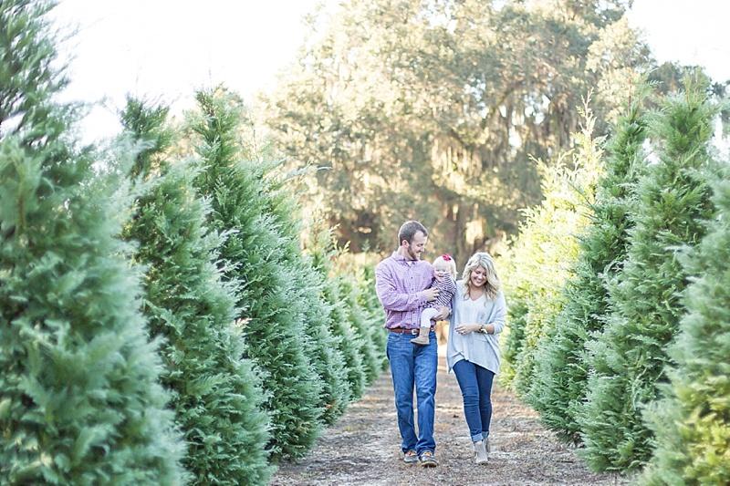 addison-christmas-trees-webster-tree-farm_0006.jpg