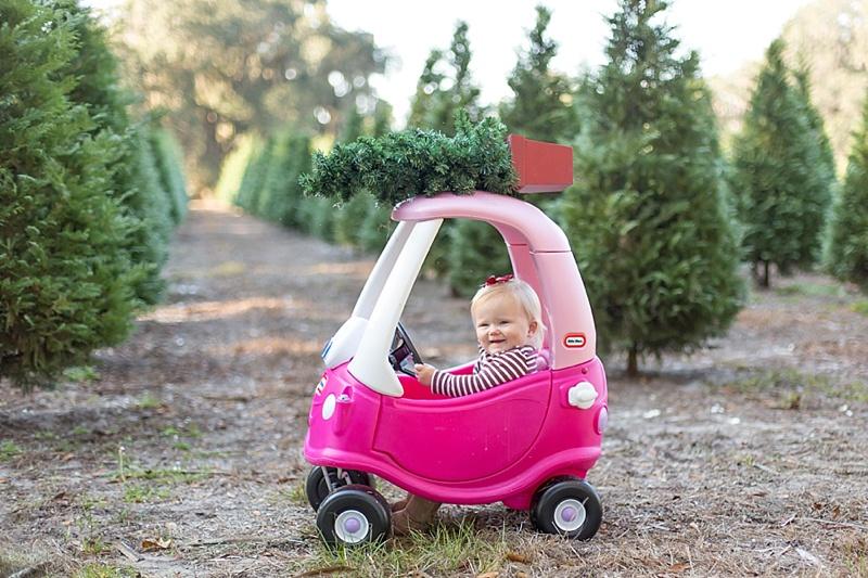 addison + christmas trees | webster tree farm_0008.jpg