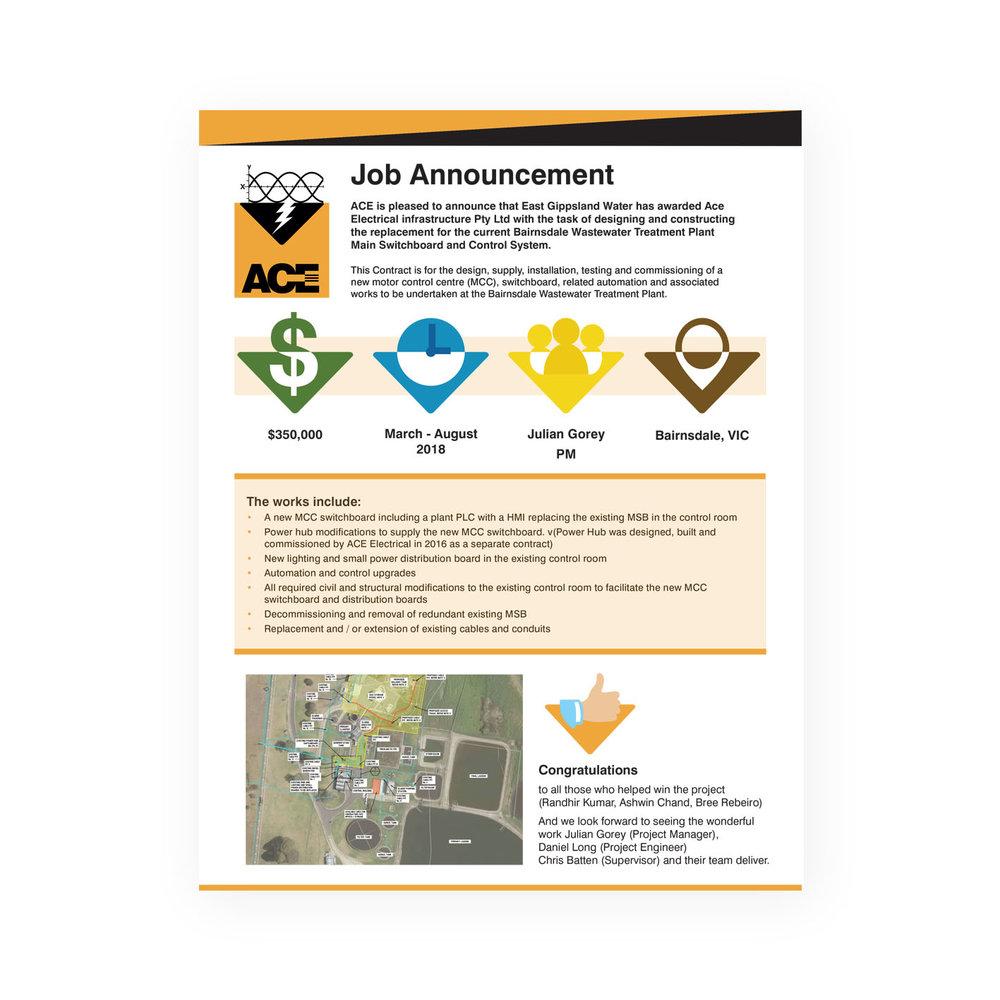 ACE job announcement.jpg