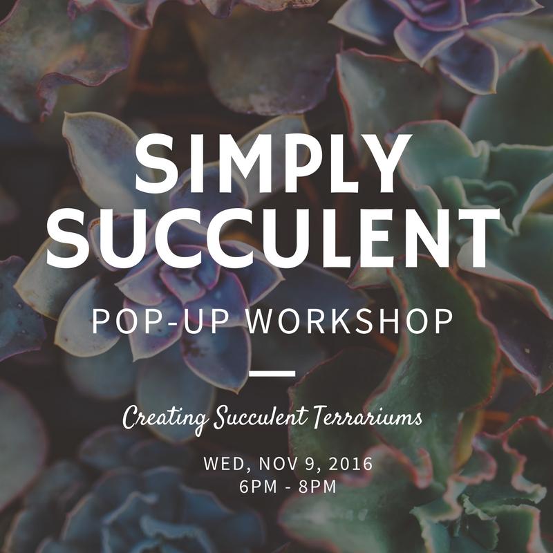simply succulent.jpg