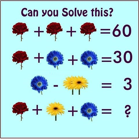 Flower Math Equations Brain Teaser.jpg