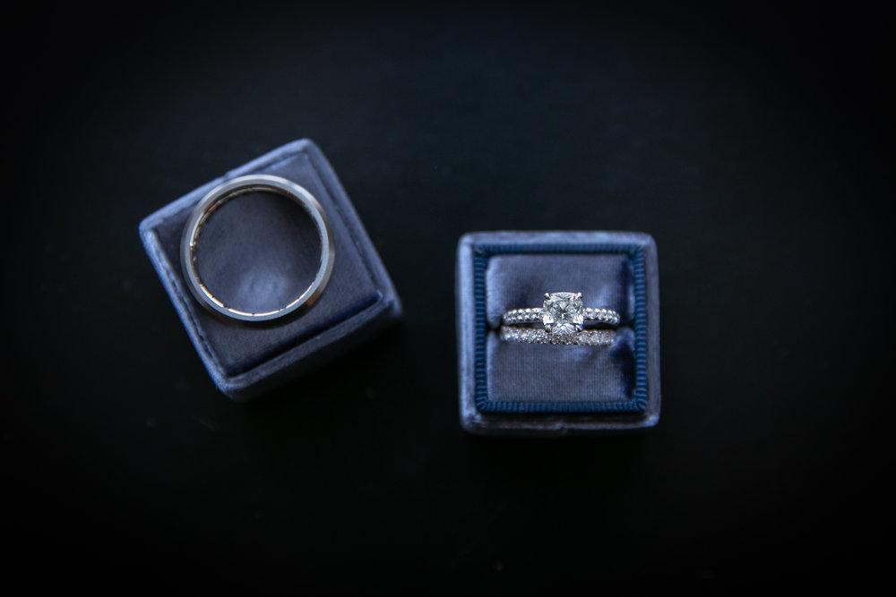 Ring.SS.Cat-1.jpg