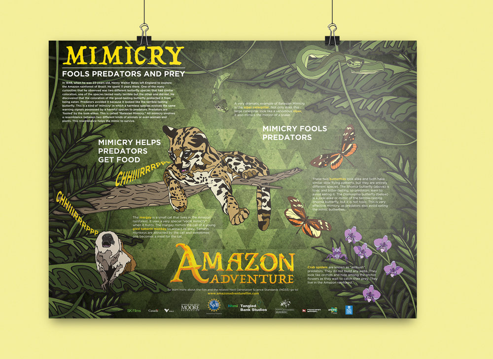 Mimicry Poster_2.jpg