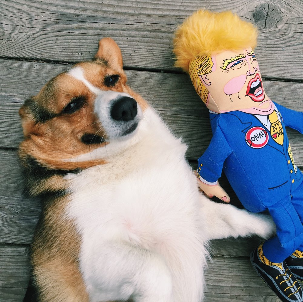 Betty chillin with Donald.JPG