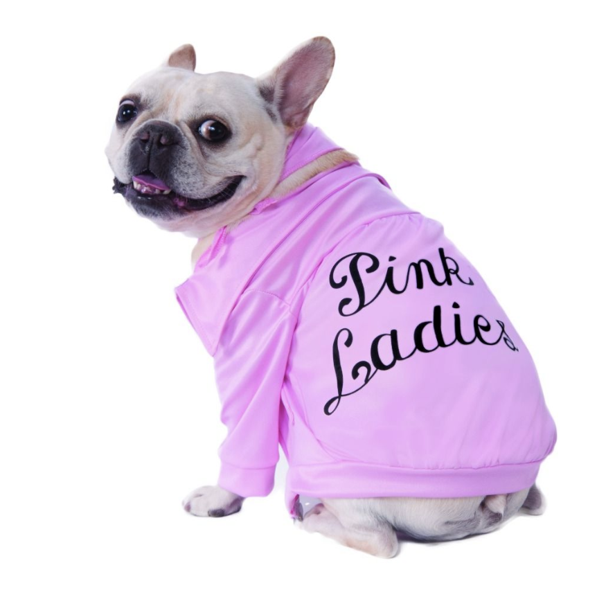 Live out your Pink Ladies fantasies with your pup!!