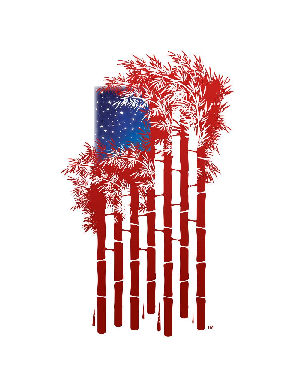 Flag-8_19_16StarsOnly.jpg