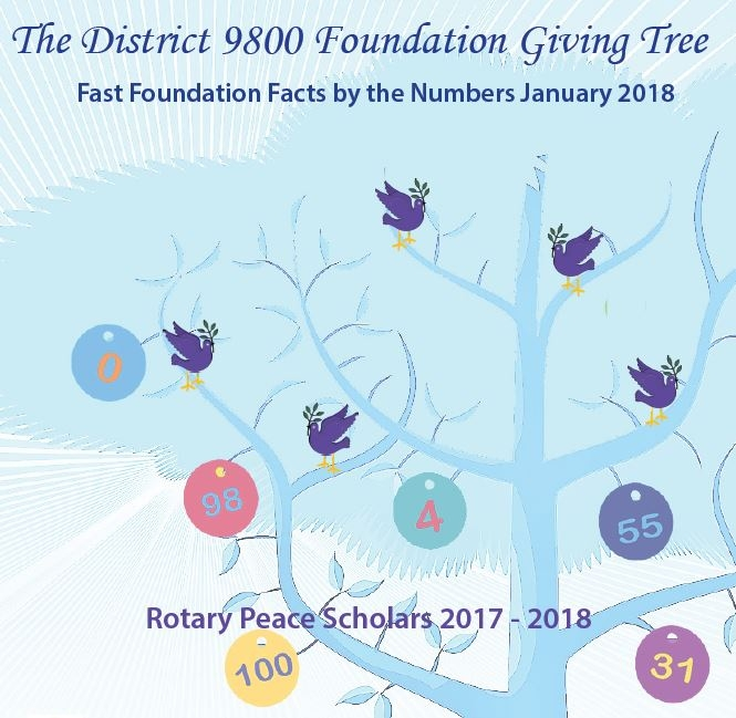 Click on the image to download the latest District 9800 Foundation Newsletter
