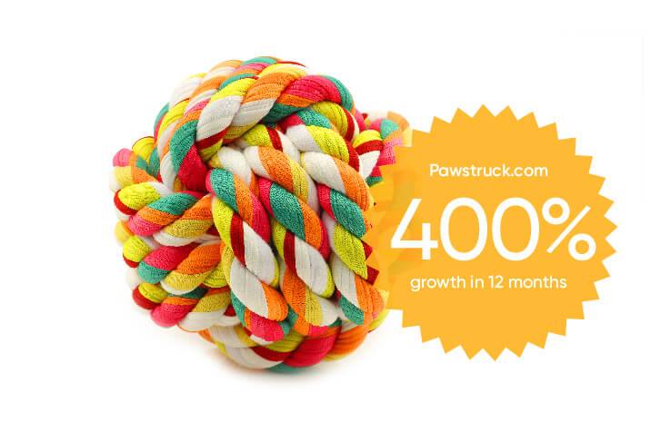 image showing client pawstruck grew 400% over 12 months