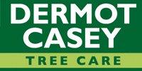 Dermot Casey