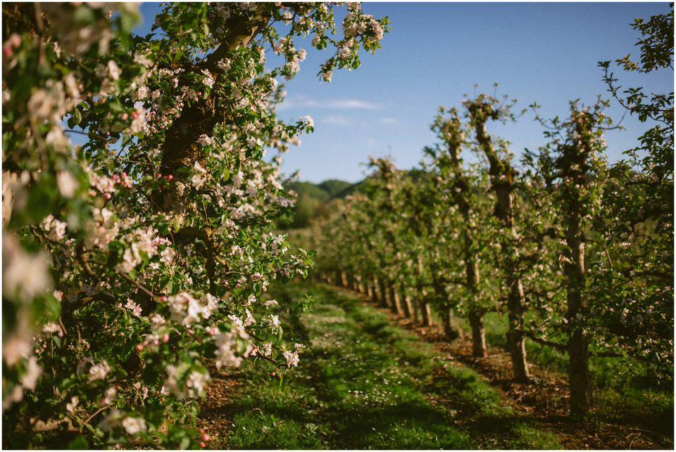 poroka-wedding-inspiration-spring-styled-session-sanjska-obleka-nika-grega-orchard-themed-destionation-photographer-slovenia-poročni-fotograf-slovenija-europe-boho-romantic-vintage 001.jpg