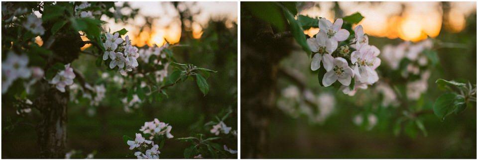 poroka-wedding-inspiration-spring-styled-session-sanjska-obleka-nika-grega-orchard-themed-destionation-photographer-slovenia-poročni-fotograf-slovenija-europe-boho-romantic-vintage 056.jpg