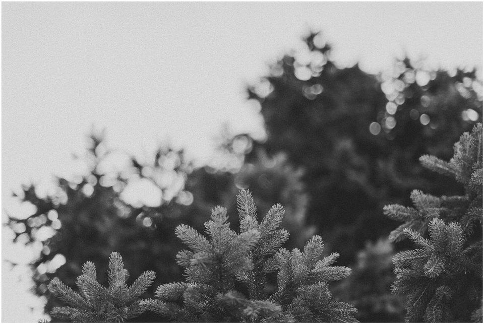 03 poroka bled otok porocni fotograf grega nika jezero maticni urad blejsko jezero pletna  (9).jpg