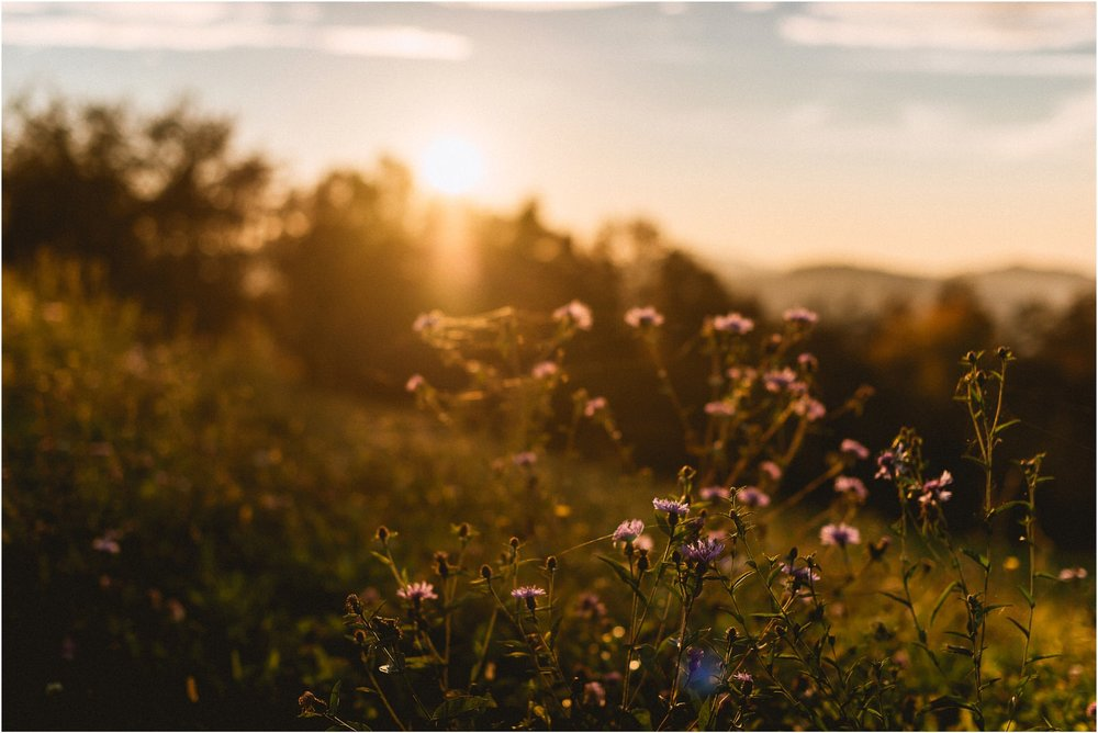 05 slovenija bled poroka ljubljana maribor brdo pri kranji nika grega porocni fotograf fotografiranje narava zaroka zaobljuba 014.jpg