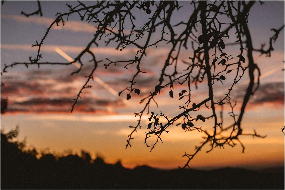 05 slovenija bled poroka ljubljana maribor brdo pri kranji nika grega porocni fotograf fotografiranje narava zaroka zaobljuba 020.jpg