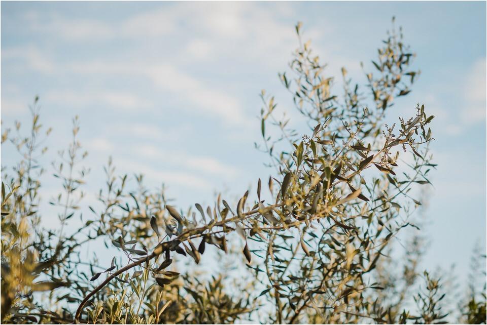 poroka portoroz piran obala primorska morje porocni fotograf fotografiranje zaroka zarocno fotografiranje izola koper slovenija wedding slovenia portorose matrimonio 017.jpg