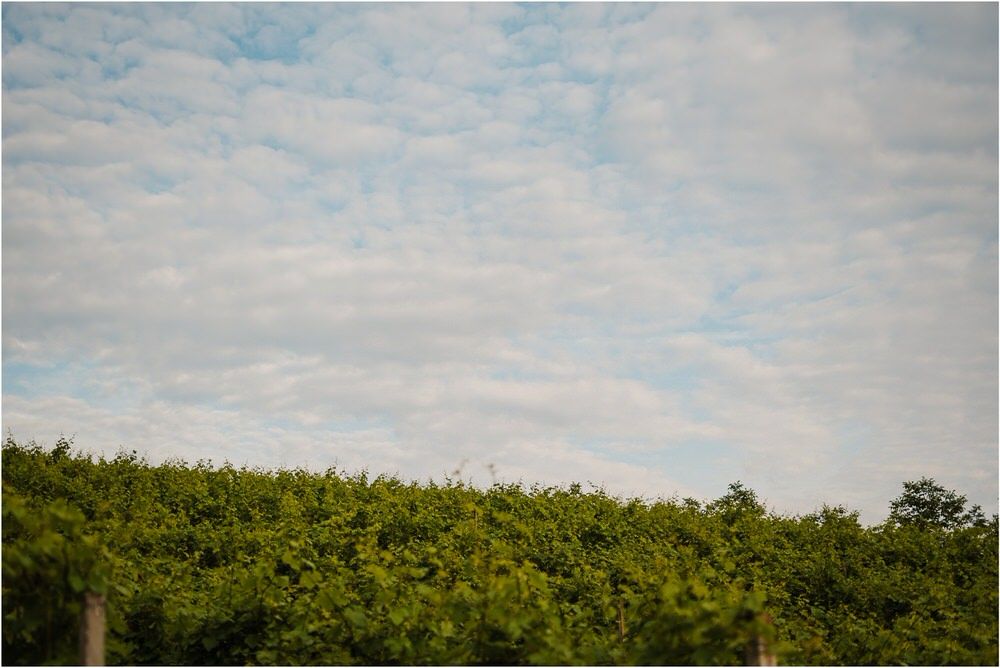 tri lucke slovenija krsko posavje poroka porocni fotograf fotografiranje elegantna poroka vinograd classy elegant wedding slovenia 0062.jpg
