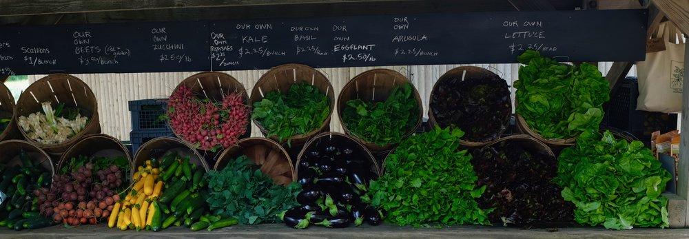 Regional und organic:Gemüse aus Montauk.