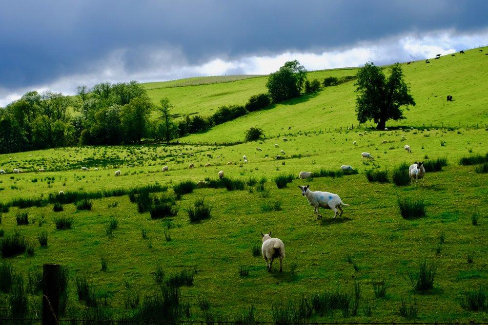 Schottland Highland Reiseblog