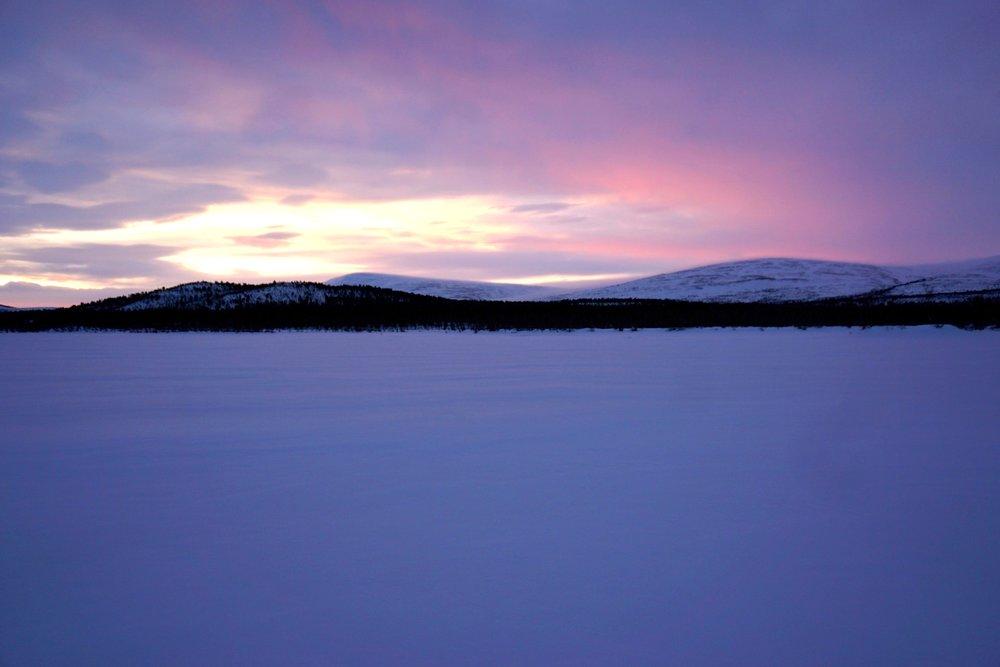 Hundeschlitten Schweden Huskys Lappland Reisetipps Schweden im Winter Hundeschlitten-Fahrt BeFifty Blog für Frauen über 40 und ab 50 Beate Finken Kiruna