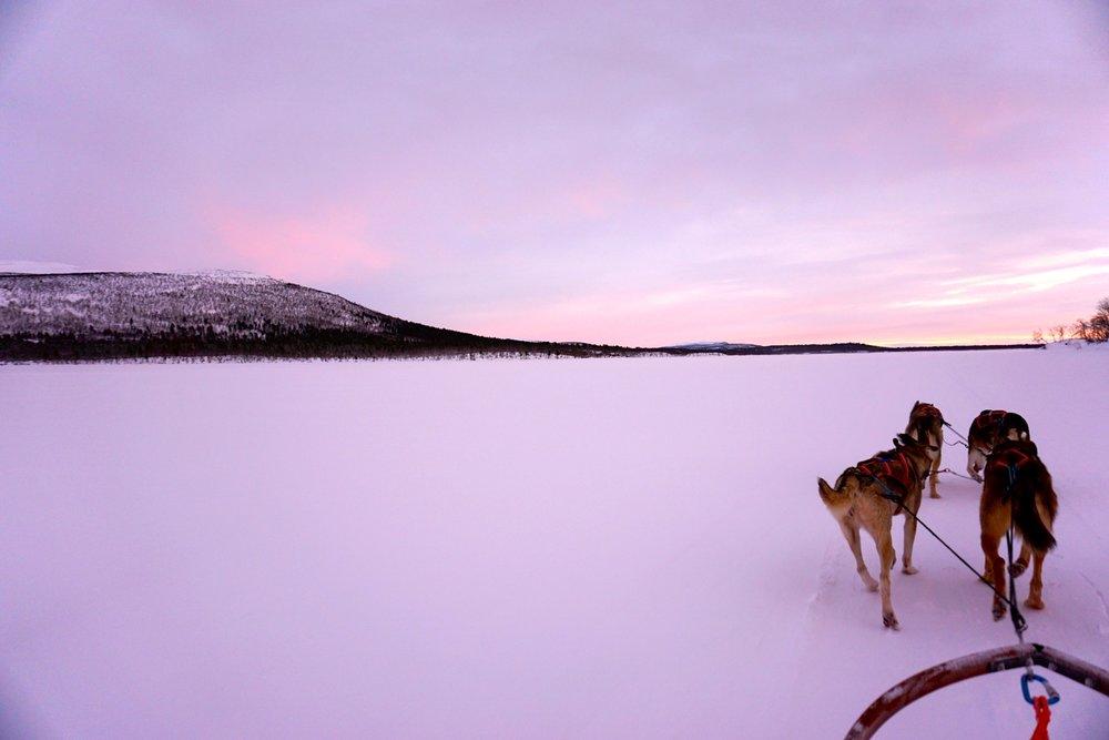 Hundeschlitten Schweden Huskys Lappland Reisetipps Schweden im Winter Hundeschlitten-Fahrt BeFifty Blog für Frauen über 40 und ab 50 Beate Finken