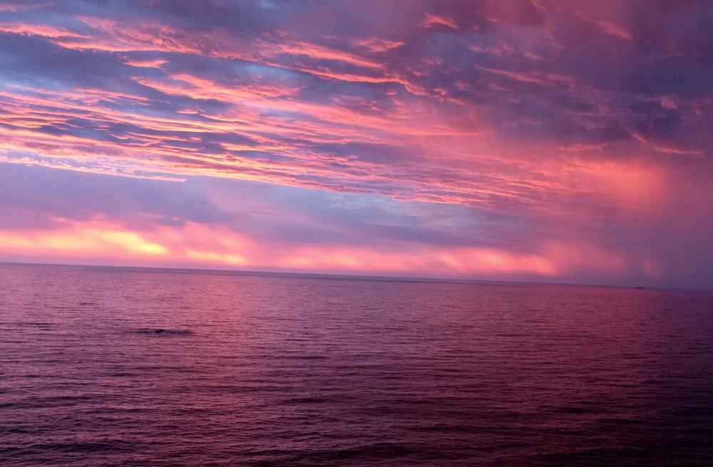 Unbezahlbar: Abendblick auf die Bucht.  The Compass House BeFifty Blog für Frauen über 50 Tipps Reise Kapstadt Südafrika Übernachtung