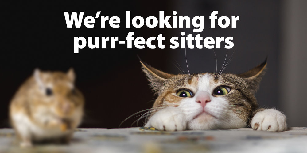 Purr-fect Sitters.jpg
