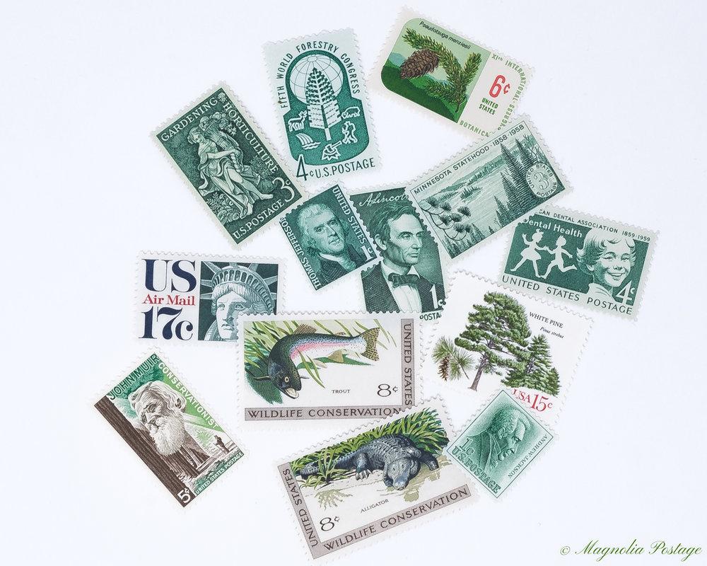 Magnolia-Postage-Green-4.jpg