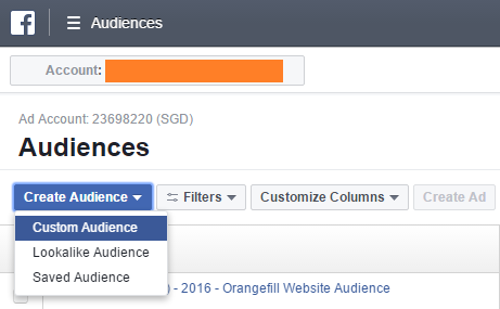 How to install Facebook Custom Audience