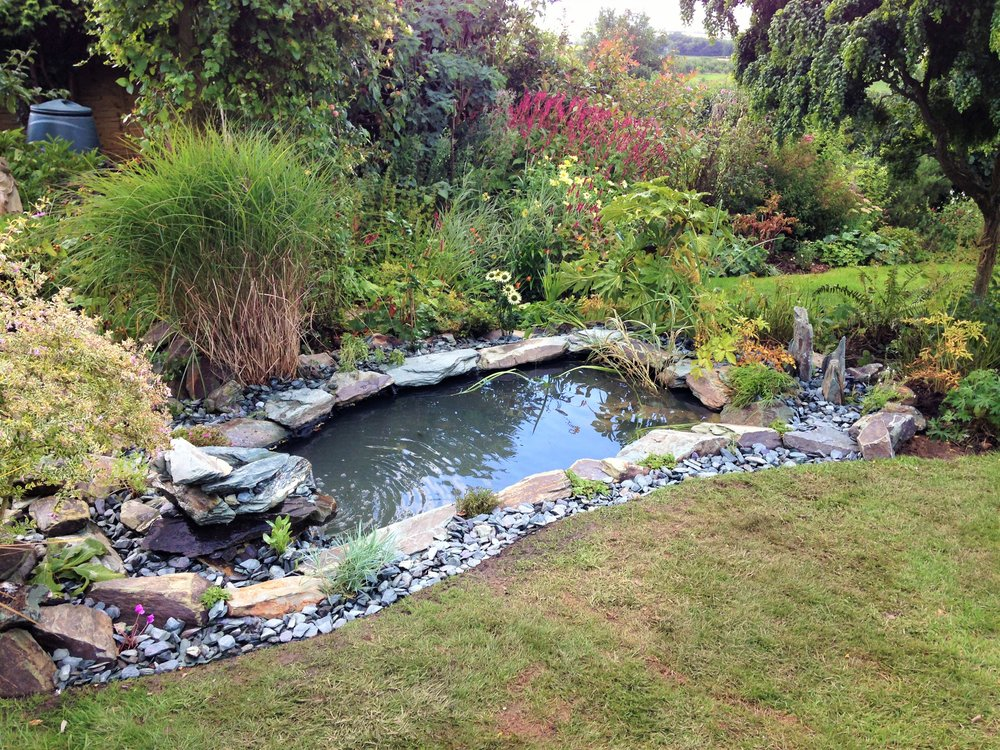 After… - Newly created fish pond with a twist