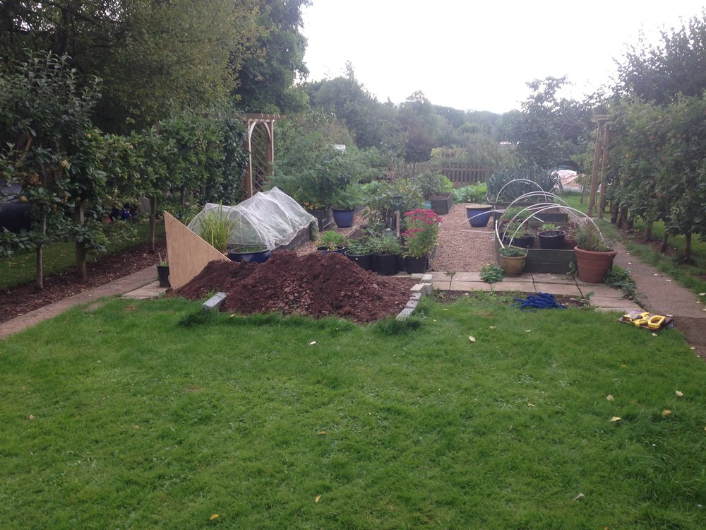 Before… - What is grass good for anyway?