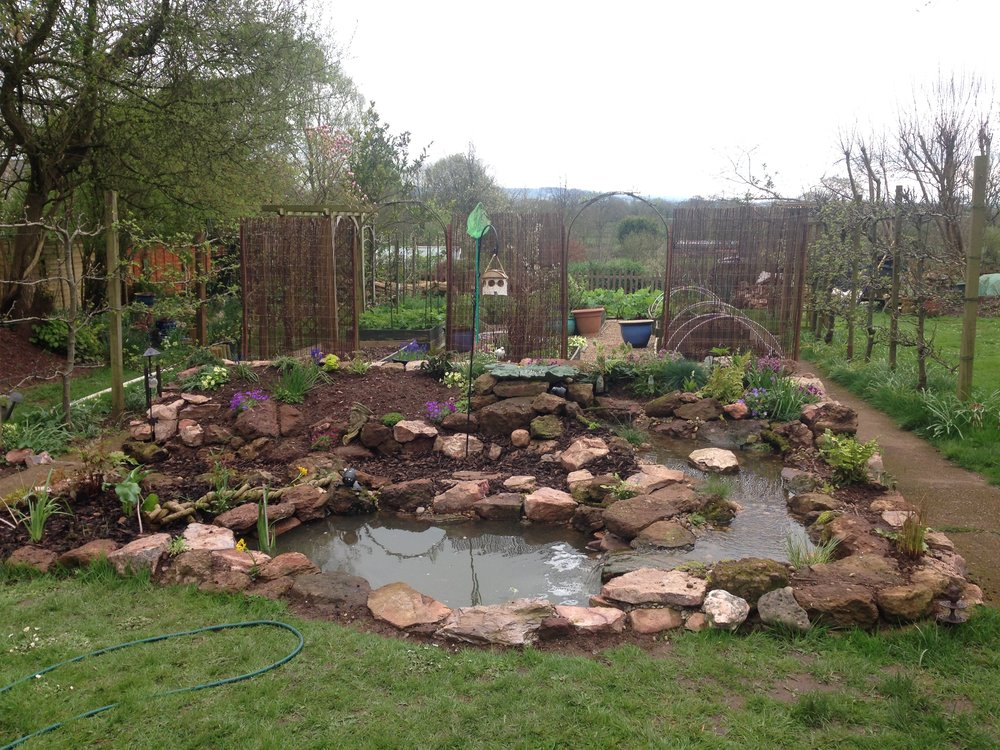 After… - Stream and pond bringing life to this space