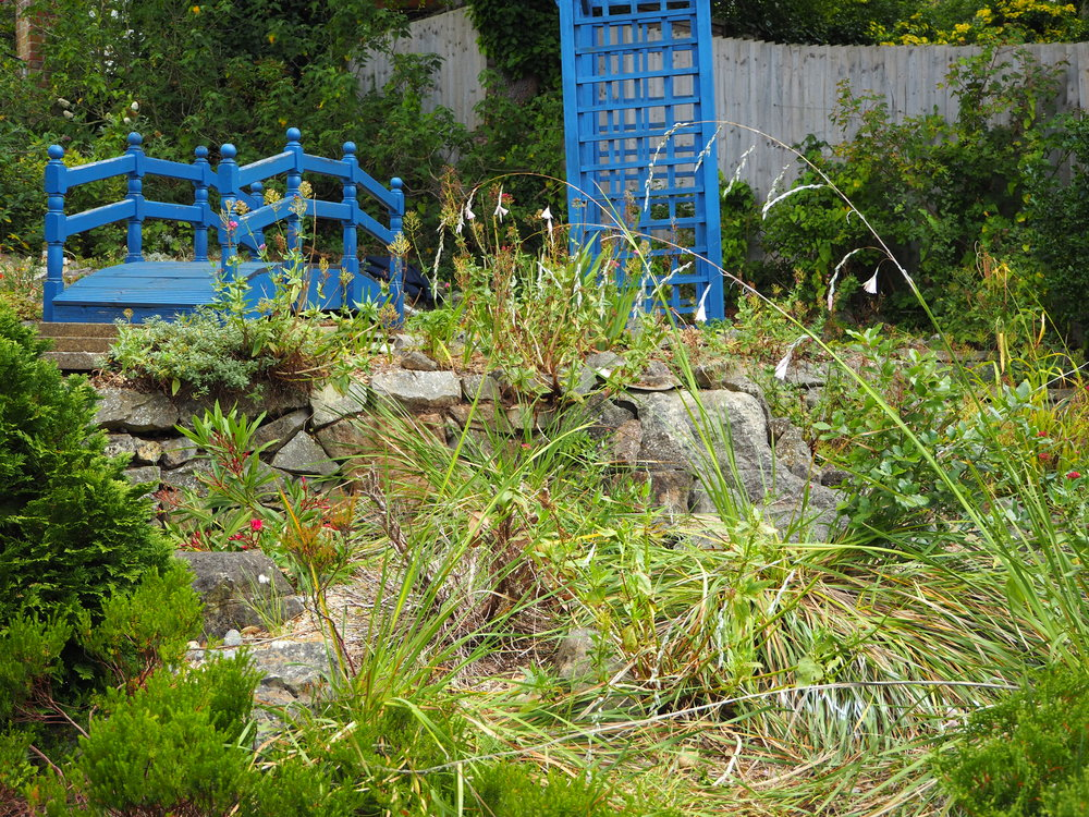 Before… - Overgrown falls and pond somewhere in there