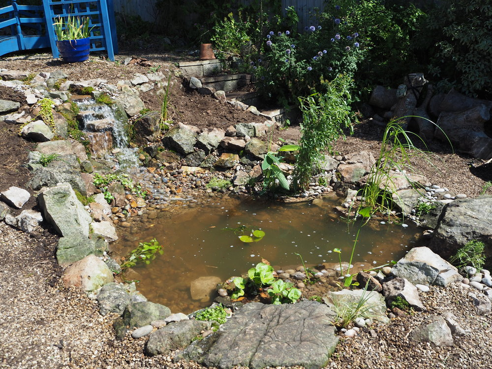 After… - Ecosystem pond and waterfall
